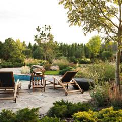Estanques de jardín de estilo  por DEREVO PARK