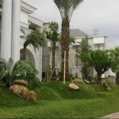 Sân trước by Tukang Taman Surabaya - Tianggadha-art