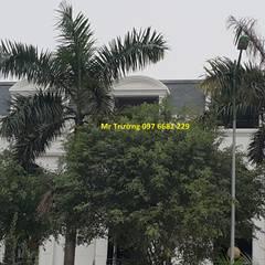 Tấm bitum giả ngói cao cấp nhập khẩu:  Khu Thương mại by Công ty TNHH Xây dựng và Thương mại Việt Pháp