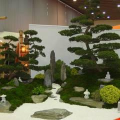 حديقة Zen تنفيذ japan-garten-kultur, أسيوي