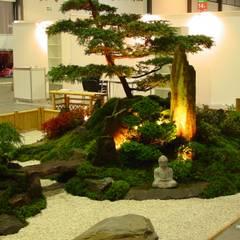 Азиатские сады в . Автор – japan-garten-kultur,