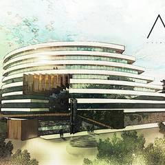 Terrace house by AV ARCHITECTURE
