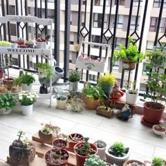 Balcony by 璞玥室內裝修有限公司