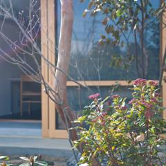 Front yard by 横山浩之建築設計事務所