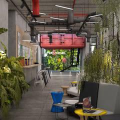 :  مكاتب ومحلات تنفيذ STUDIO PARADIGM