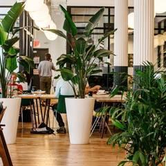 Entornos Corporativos de Bienestar: Estudios y despachos de estilo  de Simbiotia