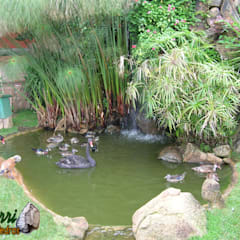 Garden Pond by Bizzarri Pedras