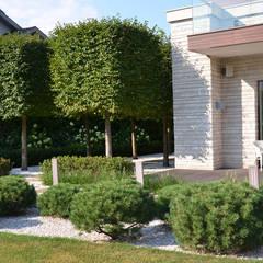 Вилла с садом в стиле модерн. КП Бенелюкс. 2012 г: Передний двор в . Автор – ARCADIA GARDEN Landscape Studio,