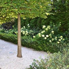 Front yard by ARCADIA GARDEN Landscape Studio, Modern