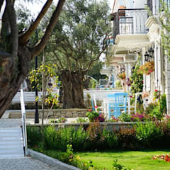 BK MİMARİ TASARIM – ZEYTİN ARASI:  tarz Kır evi,
