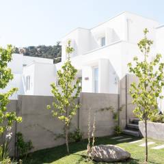 Front yard by Estudio Amani