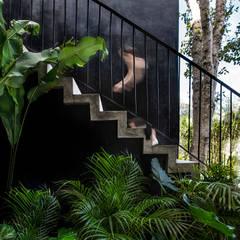 Tangga oleh Obed Clemente Arquitectura, Tropis Beton