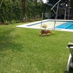VIVERO LA FLOR DE MORELOS의  바위 정원