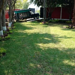 Jardines en la fachada de estilo  por VIVERO LA FLOR DE MORELOS