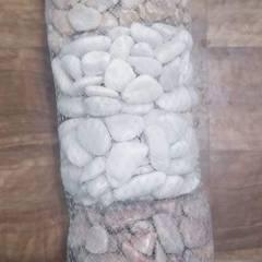 Jardines de piedra de estilo  por VIVERO LA FLOR DE MORELOS,