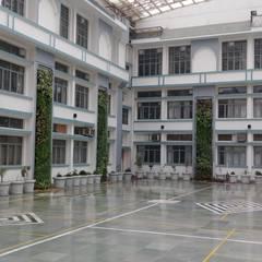 Vertical Garden by Lifewall in Bluebells school(Gurgaon):  Schools by Vertical Gardens, Lifewall