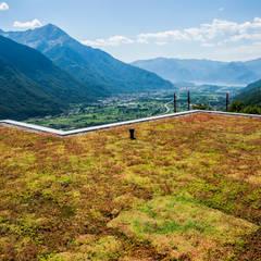 Flat roof by studio bioprogettazionetarca di tarca davide