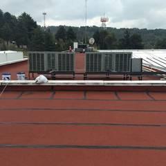 Roof by Aufsten,