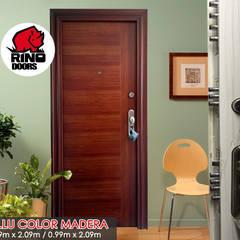 Puertas de entrada de estilo  por Puertas y Blindajes