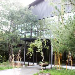 สวนแบบเซน by 台中室內建築師|利程室內外裝飾 LICHENG