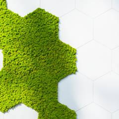 Przestrzenie biurowe i punkt obsługi – projekt wnętrz biurowych z wertykalnym ogrodem: styl , w kategorii Biurowce zaprojektowany przez SZARA / studio,