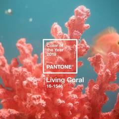 Estudio Coral: Oficinas y Tiendas de estilo  por Pragma - Diseño