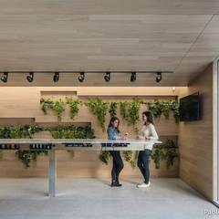 Locales gastronómicos de estilo  por Pablo Muñoz Payá Arquitectos