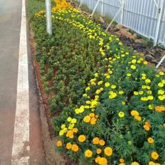 Jardines en la fachada de estilo  por Gardener Landscape,