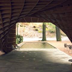 Garden Pond by Protoforma