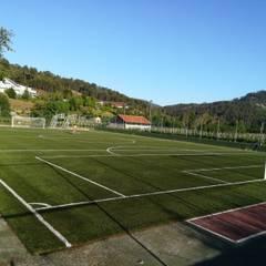 Estadios de estilo  por Albergrass césped tecnológico