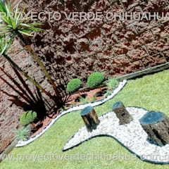 Rock Garden by PROYECTO VERDE CHIHUAHUA