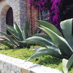 Garden by Brenda Vizcaíno - Arquitectura de Paisaje,