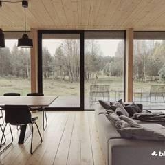 Minimalistyczny dom - stolarka aluminiowa Minimalistyczne okna i drzwi od Przedsiębiorstwo Bizmet Spółka z o.o. Minimalistyczny Aluminium/Cynk