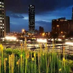 Parque Bicentenario: Jardines frontales de estilo  por Helecho SAS