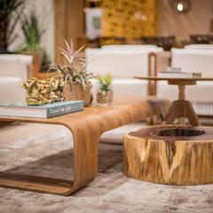 Sala de Estar Salas de estar rústicas por Erlon Tessari Arquitetura e Design de Interiores Rústico