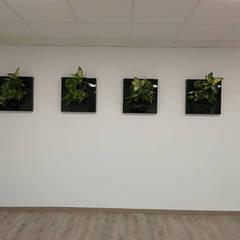 Offices & stores by BARASONA Diseño y Comunicacion