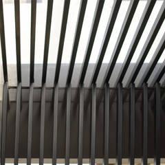 Q-House: Taman oleh CV Berkat Estetika, Tropis Metal