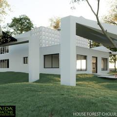 FOREST HOUSE CHOLUL, YUCATÁN: Casas ecológicas de estilo  por AIDA TRACONIS ARQUITECTOS EN MERIDA YUCATAN MEXICO, Moderno