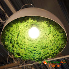 Thi công tường Rêu Nội Thất:  Hiên, sân thượng by Công Ty TNHH XD Cảnh Quan Vườn Nhà Đẹp,