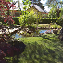 Oleh Jardines Japoneses -- Estudio de Paisajismo Asia