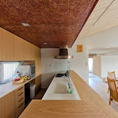 Built-in kitchens by 一級建築士事務所 感共ラボの森, Asian Wood Wood effect