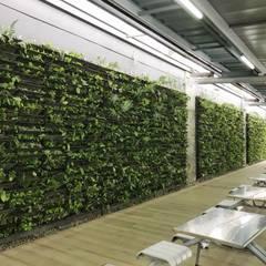 Edificio Elemento (Bogotá): Jardines frontales de estilo  por Helecho SAS