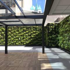 Flor Morado Plaza: Jardines frontales de estilo  por Helecho SAS