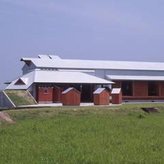 伝承食工房 とうがらし: (株)独楽蔵 KOMAGURAが手掛けた学校です。