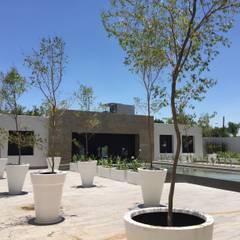 Espacio Monraz : Edificios de Oficinas de estilo  por Withs Gardens