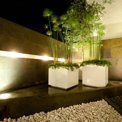 Estanques de jardín de estilo  por NATALIA MENACHE ARQUITECTURA, Minimalista