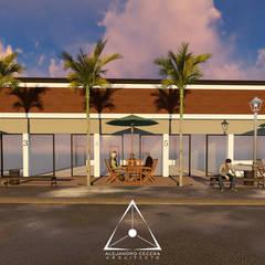 Plaza Morelos: Casas de estilo  por Alejandro Ceceña Arquitecto