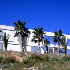 Single family home by VILA arquitectes