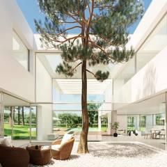 Zen garden by Otto Medem Arquitecto vanguardista en Madrid,