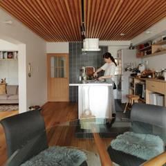 三矢町マンションリノベーション: 藤森大作建築設計事務所が手掛けたシステムキッチンです。,北欧 金属